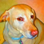 Labrador Portrait
