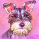 Miniature Schnauzer Dog Art