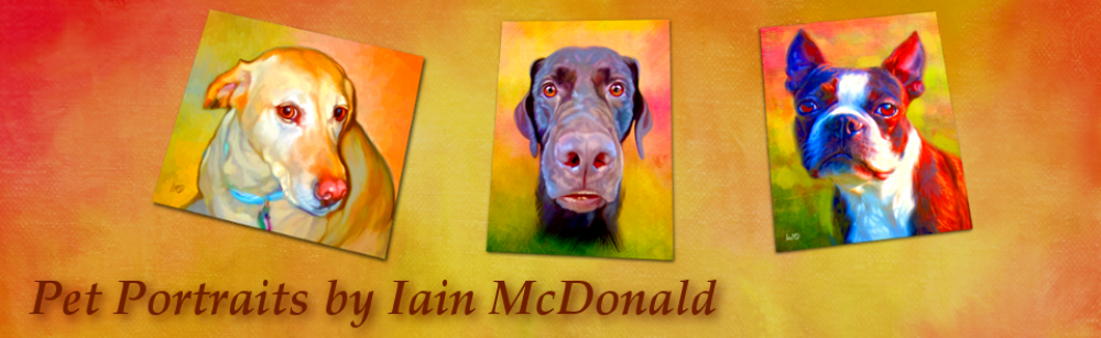 Pet Portraits and Dog Cat Art By Iain McDonald