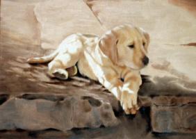 Click for larger dog art portrait